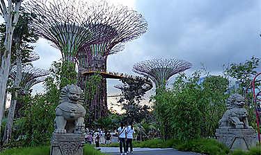 Singapour les incontournables for Au jardin les amis singapore