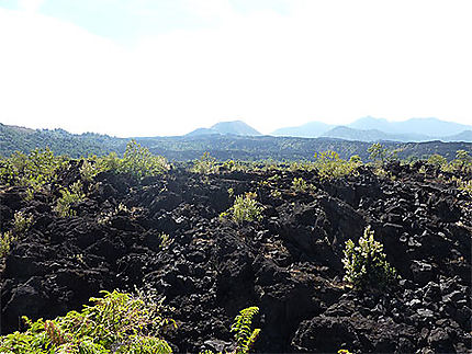 Le volcan Paricutin et son champs de projectiles