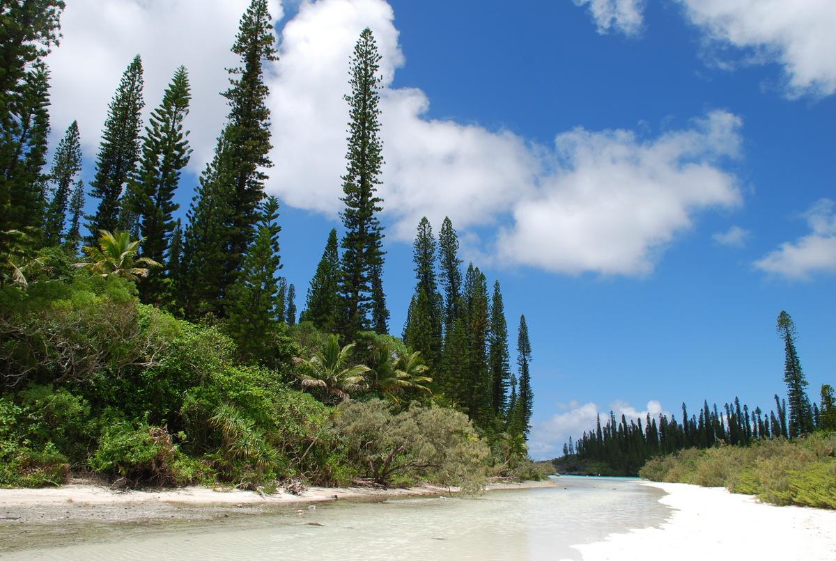 Île des Pins - Nouvelle-Calédonie