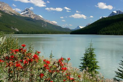 Le beau lac Bow