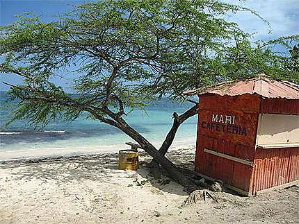 Cabane sur le bord de plage de Punta Rusia