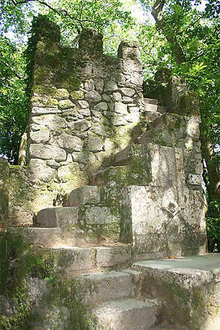 Ruines dans la forêt