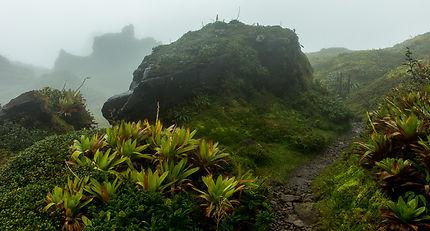 Brume au volcan de la Soufrière