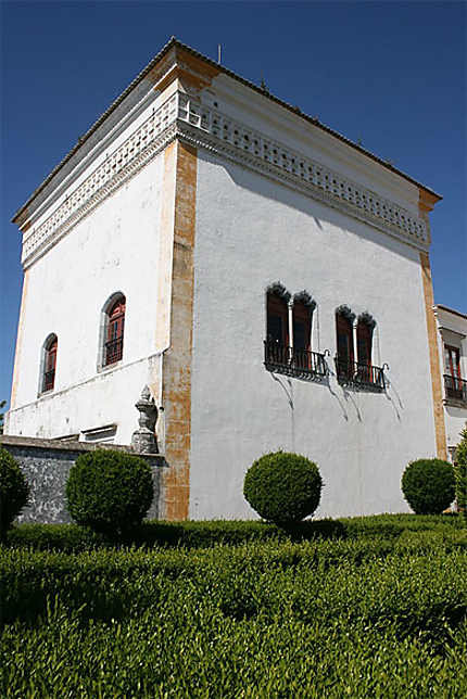 Le palais national de Sintra vu des jardins