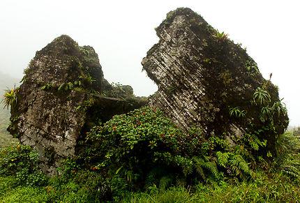 Roche fendue, volcan de la Soufrière