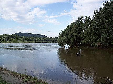 Confluent Danube-Morava