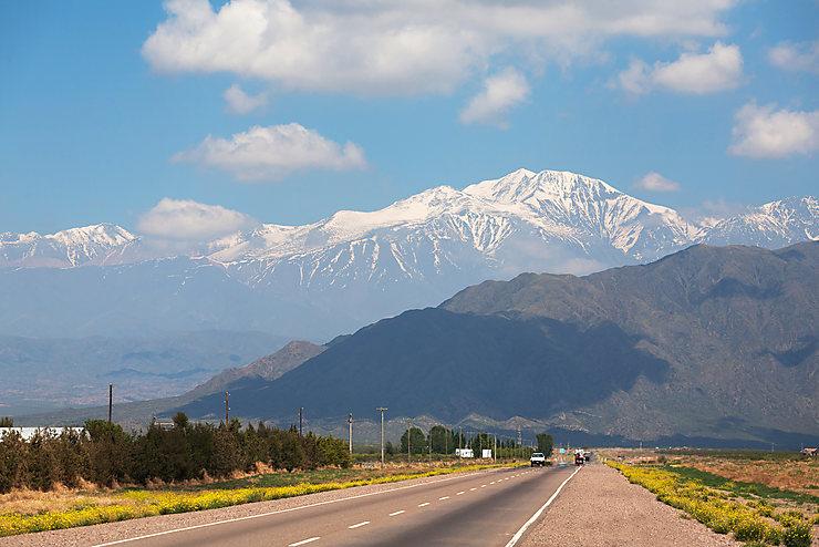 La Translatina (Argentine, Chili)