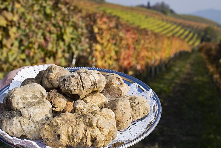 Piémont : la truffe blanche et la gastronomie en fête