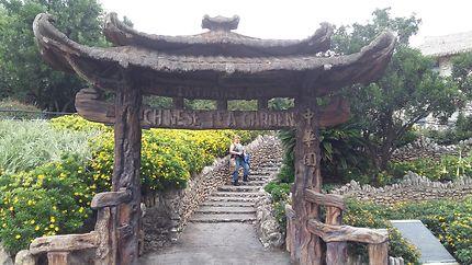 Jardin de thé Japonais