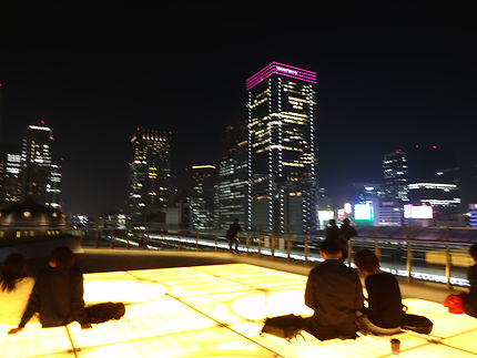 Sur les toits de Tokyo