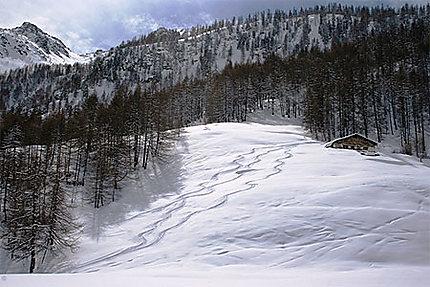 Paysage alpin