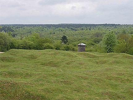 Verdun - champ de bataille