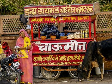 Échoppe de rue, Bikaner, en Inde