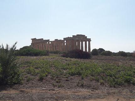 Site archéologique de Selinunte