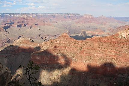 Ombre d'un éléphant à Grand Canyon