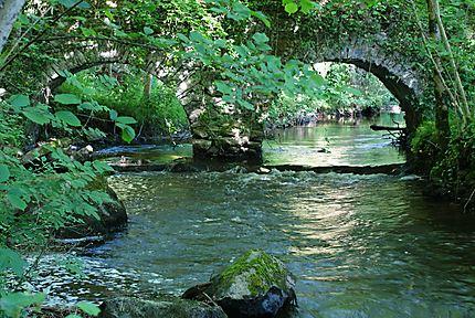 Aqueduc en forêt