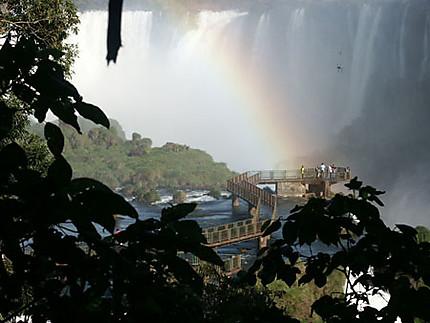 Chuttes d'Iguaçu