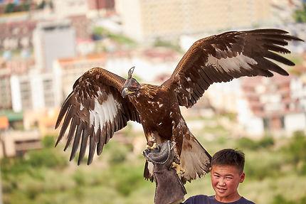 L'aigle qui aide l'homme