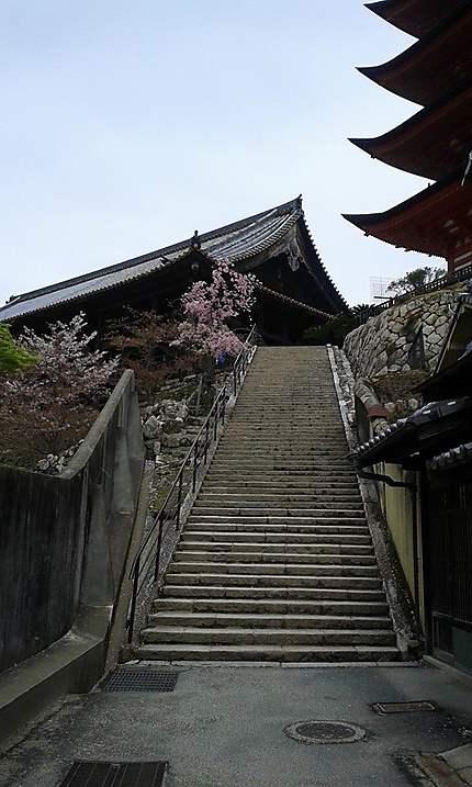 Ile de Miyajima - sanctuaire Itsukushima