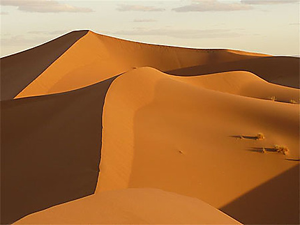 dunes du sahara