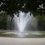 Un oeil discret sur le Parc de Bruxelles