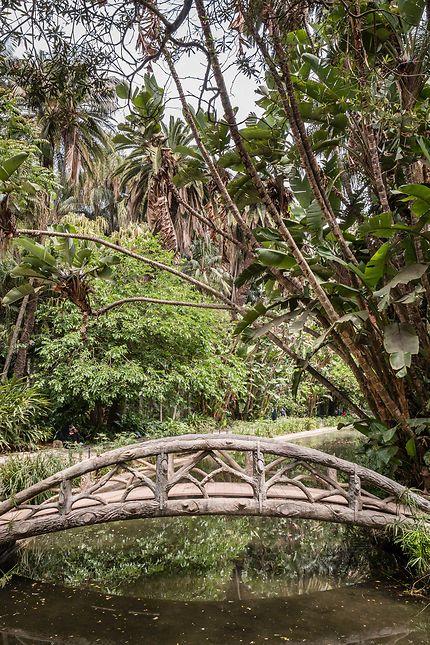 Alger - Jardin d'Essai - Le petit pont