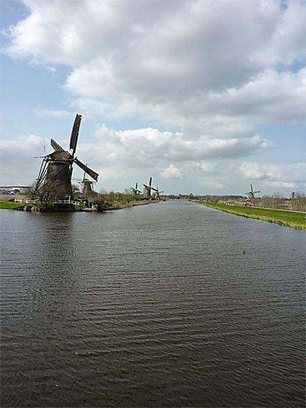 L'avenue des moulins