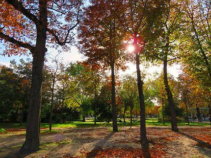Jardins des Champs Élysées en automne