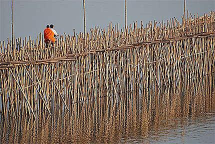 Pont de Bambou sur le Mekong