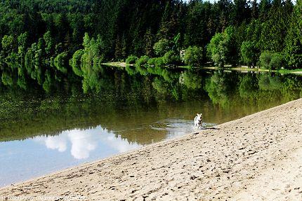 Lac d'Issarlès au dessus du mont Gerbier de joncs