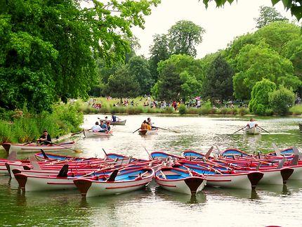 Balade sur le lac Daumesnil du bois de Vincennes