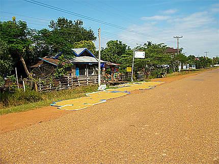 De Champassak au Wat Phou