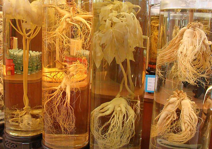 Qing Ping, le marché de la médecine chinoise traditionnelle