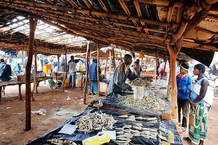 Stand de poissons séchés au marché, Mozambique