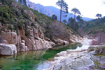 piscine naturelle porto vecchio