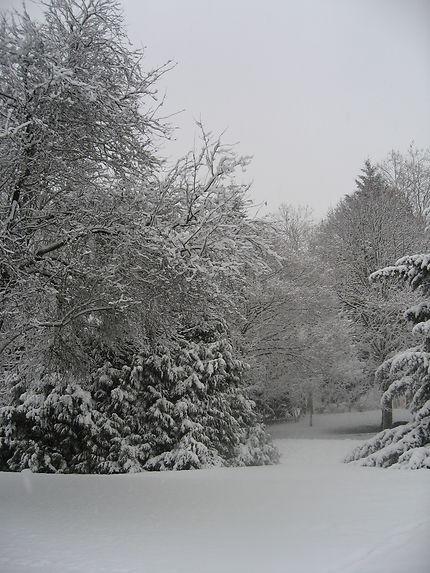 Promenade au pays du blanc, Lisieux
