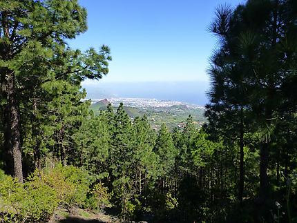 Vue de Sta Cruz depuis la forêt