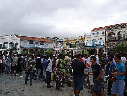 Marché à Plaza Vieja