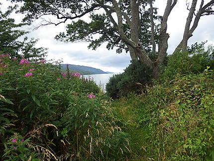 Balade autour du Loch Ness