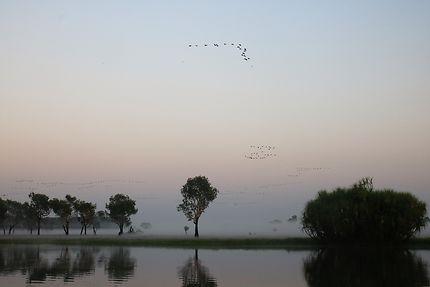 Un matin calme