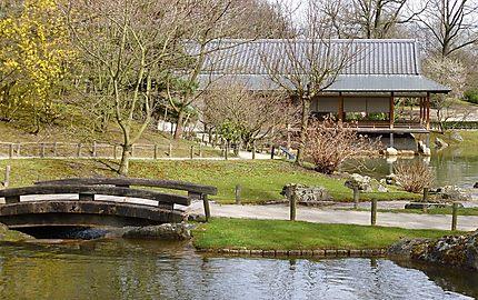 Jardin Japonais Hasselt Province De Limbourg Belgique