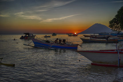 Pécheur Sulawesi