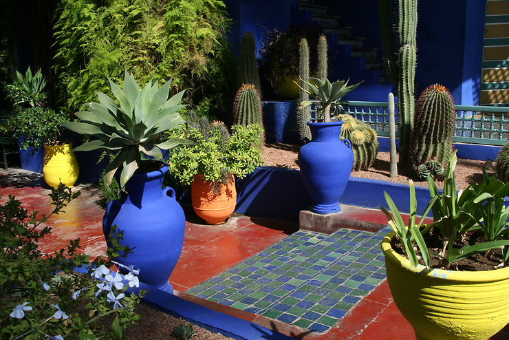 Composition à Majorelle, Marrakech