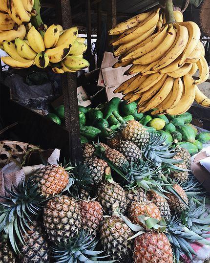 Fresh fruits, sunshine, miles of paradise