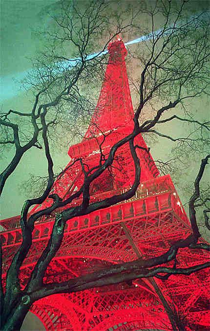 Eiffel de Chine, éfile de chêne