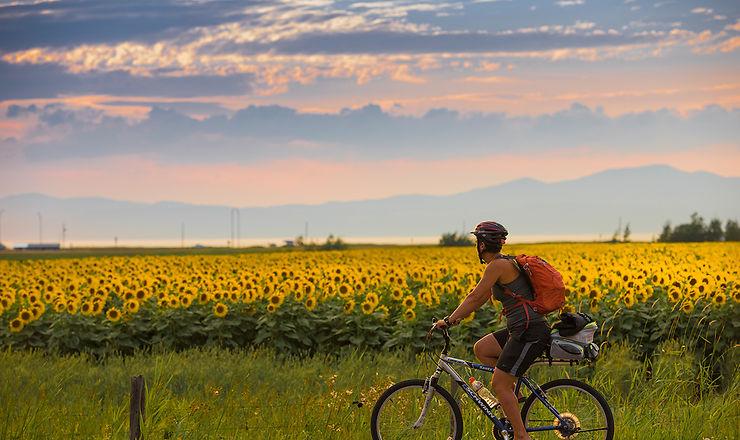 La Route verte : 5 000 km à travers le Québec