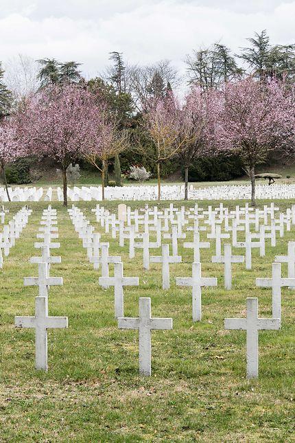 """Nécropole """"La Doua"""" - Un jardin de tombes"""