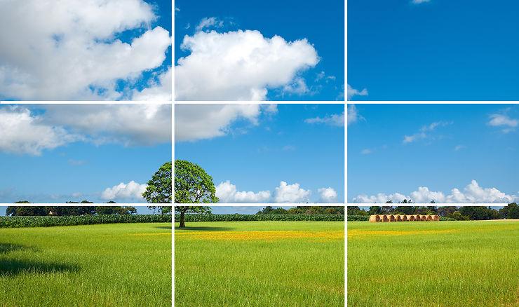 4- Soignez la composition et utilisez la règle des tiers