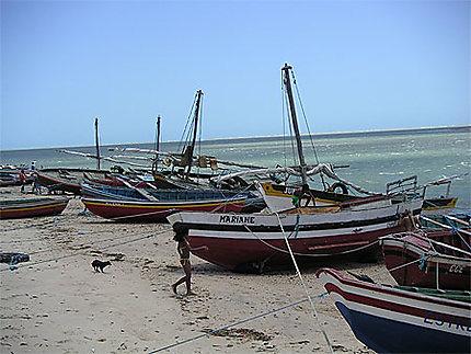 Jericoacoara bateaux