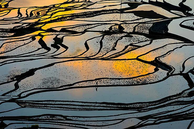Rizières en terrasses de Yuanyang (Chine)